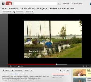 WDR 3 Lokalzeit OWL Bericht zur Blaualgenproblematik am Dümmer See